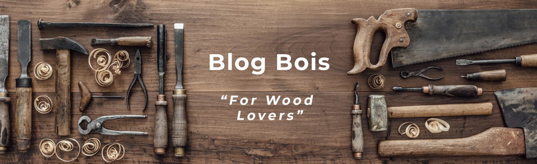 Blog Bois